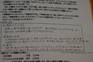 DSC03710.JPG